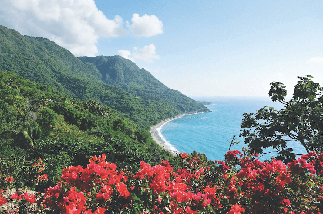A luscious forest by the ocean featuring red flowers