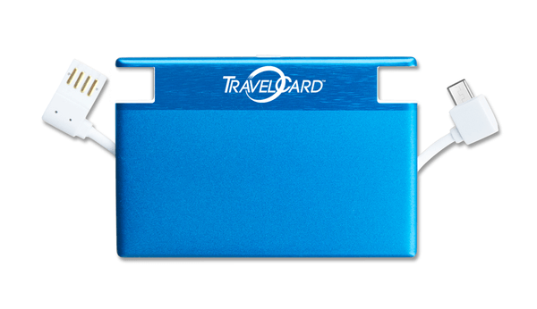 a travel card gadget case for phone and accessory chargers